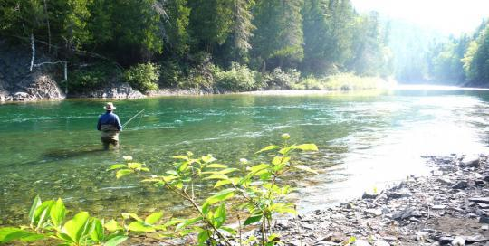 King of the river - Film Fixer Canada Searching for the King in the gaspe peninsula